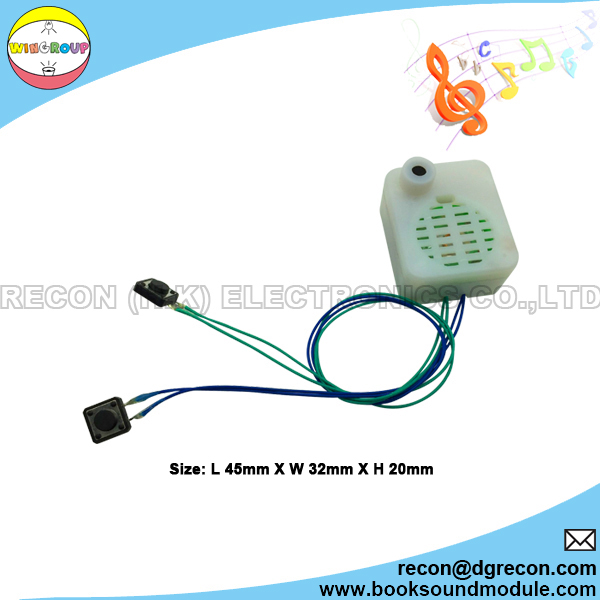 Recordable sound box for toy module